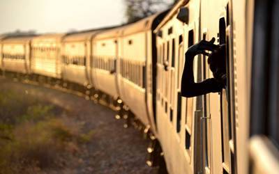 Six elephants killed by speeding train in Assam