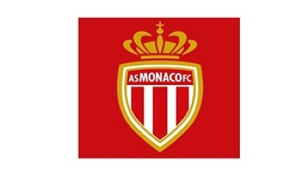 Monaco-Nice Ligue 1 match postponed due to French Yellow Vest crisis